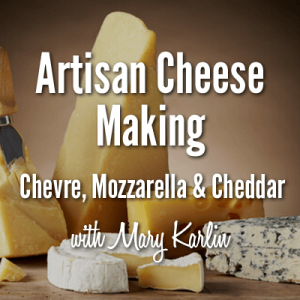 Artisan Cheese Making - Chevre, Mozzarella & Cheddar